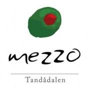 mezzo logo tandådalen sälen